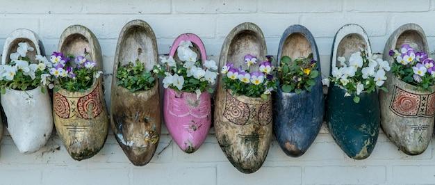 Vecchi zoccoli di legno con i fiori di fioritura