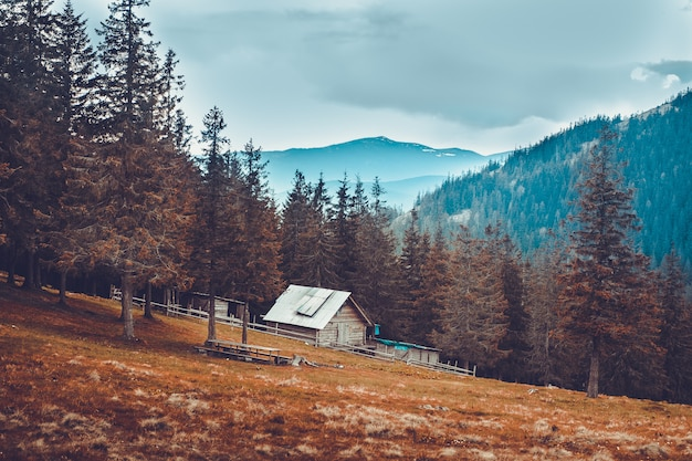 Vecchia casa rurale nelle montagne carpatiche