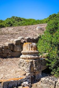 Vecchia colonna nel sito archeologico di tharros, sardegna