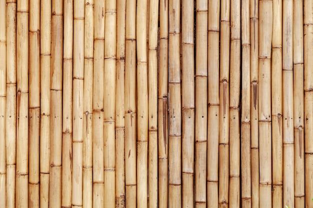 Vecchia parete di bambù del recinto per il fondo e il web design della natura