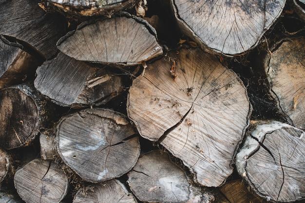 Vecchia parete marrone della legna da ardere del cerchio tagliato. priorità bassa strutturata con pannello naturale in legno.