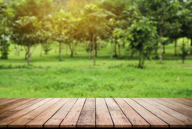 Vecchia plancia di legno con il fondo verde naturale astratto dell'albero per l'esposizione del prodotto