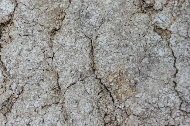 Vecchia schiuma ricoperta di crepe, sporco e muffa.