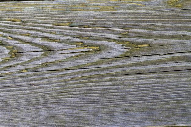 Vecchia sporca tavola di pino con crepe, coperta di vernice verde scuro