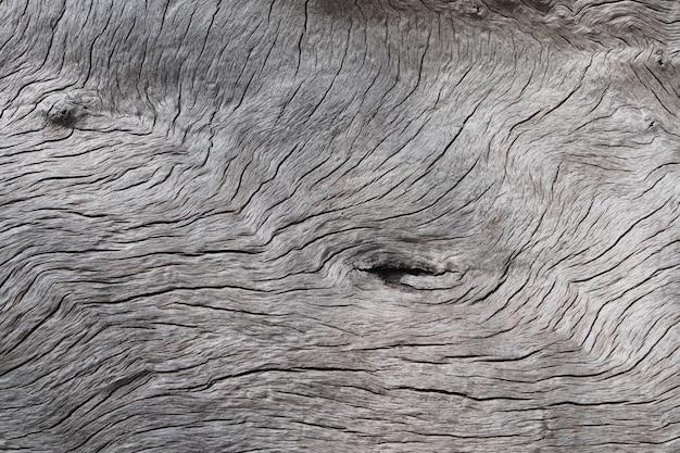 Vecchia struttura di legno. priorità bassa di struttura del legname dell'annata