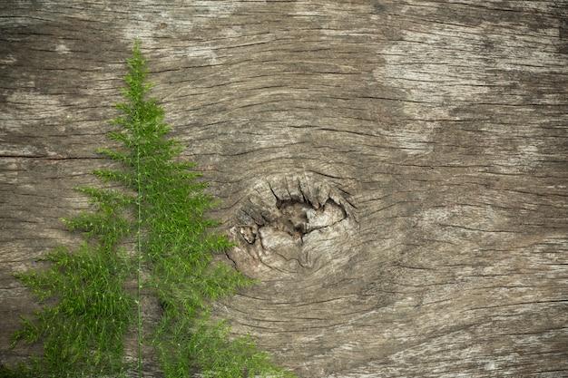 Vecchia superficie di legno con erba di legno usata come fondo