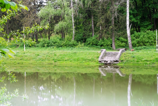 Vecchie pietre muscose del passaggio alla riva del lago con l'albero verde