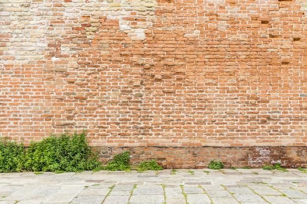 Vecchio muro di mattoni con erba con lo spazio della copia