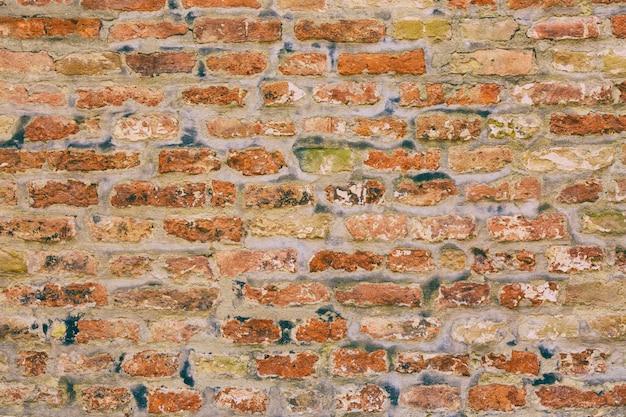 Vecchio muro di mattoni del grunge dell'annata.