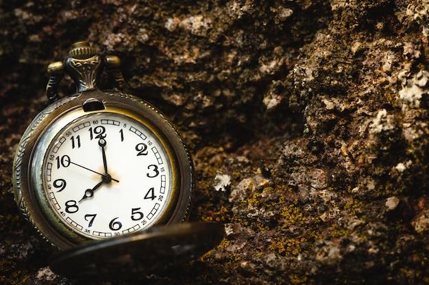 Vecchio orologio da tasca d'annata disposto sulla roccia nella foresta e nella luce solare di mattina. alle 8. primo piano e copia spazio.