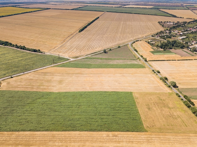 Veduta aerea dall'alto da drone a girasole e campi di grano