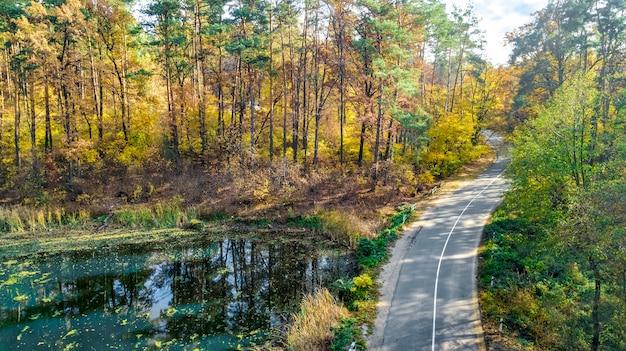Veduta aerea del paesaggio autunnale e strada dall'alto, alberi di autunno d'oro giallo, verde e rosso e strada di campagna per auto