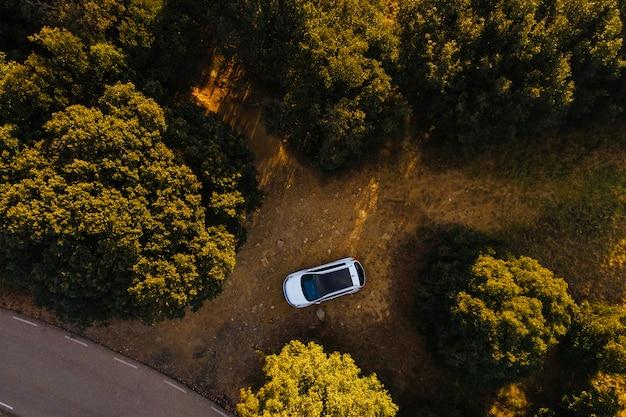 Veduta aerea della strada di montagna