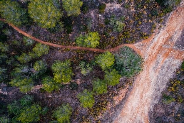 Veduta aerea di strade e foreste
