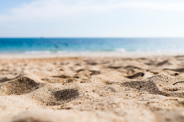 Veduta di una spiaggia sabbiosa