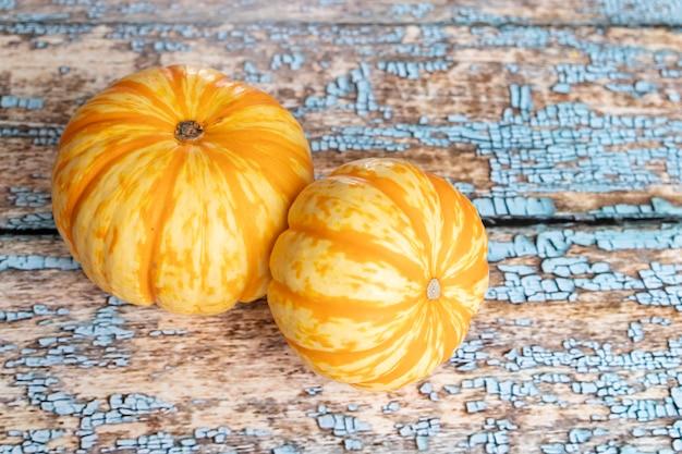 Veduta di zucche arancioni