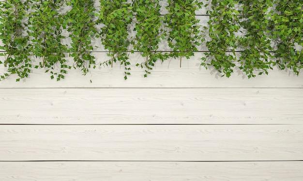 Vegetazione dell'edera della rappresentazione 3d sulla parete di legno bianca