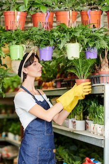 Venditore di piante da lavoro
