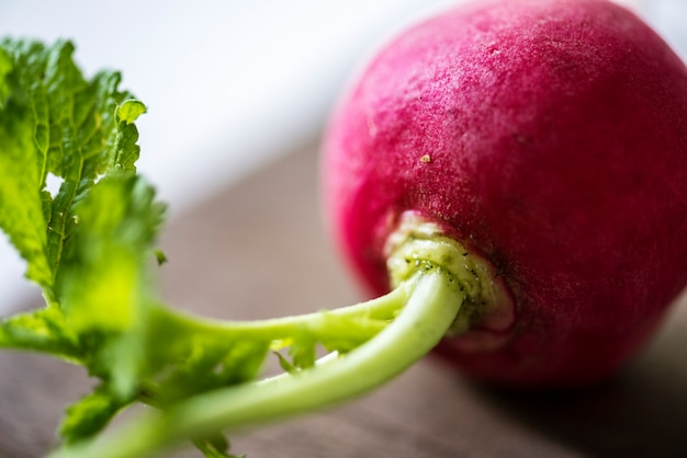 Verdura fresca ravanello rosso