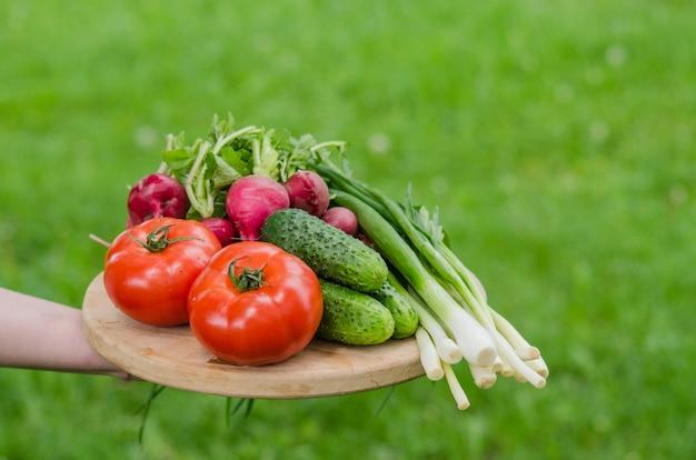 Verdure crude fresche su un vassoio di legno