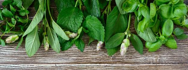 Verdure ed erbe fresche, raccolte dal giardino. erbe per preparare tisane. prodotti utili su un tavolo di legno (basilico, menta, salvia, melissa). banner per il tuo progetto.