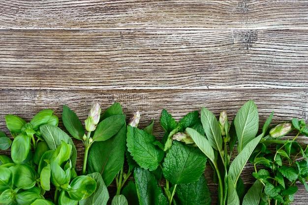 Verdure ed erbe fresche, raccolte dal giardino. erbe per preparare tisane. prodotti utili su un tavolo di legno (basilico, menta, salvia, melissa)