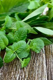 Verdure ed erbe fresche, raccolte dal giardino. erbe per preparare tisane. prodotti utili su un tavolo di legno (menta, salvia, melissa).