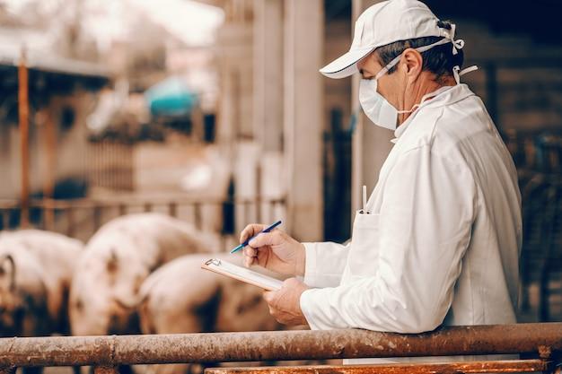 Veterinario in camice bianco, cappello e con maschera protettiva sul viso che scrive negli appunti risultati dell'esame di maiali stando in piedi in cote.