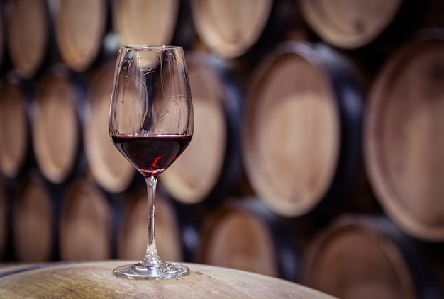 Vetro del primo piano con vino rosso sul barilotto di legno della quercia del vino impilato nelle file diritte nell'ordine, vecchia cantina della cantina, volta. degustazione professionale, winelover, viaggio sommelier
