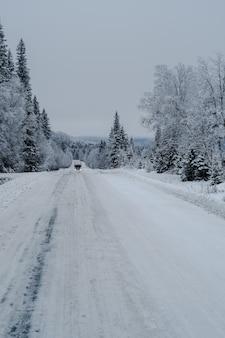 Via in una foresta coperta di neve con un camion e alberi su uno sfondo sfocato
