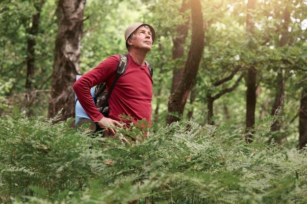 Viaggiatore anziano che cammina nella foresta, indossando abiti casual, porta zaino con tappeto, in piedi con le mani sui fianchi