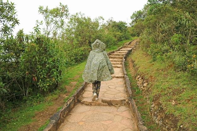 Viaggiatore che cammina sul sentiero di pietra nella pioggia in direzione del sito archeologico di kuelap, perù settentrionale