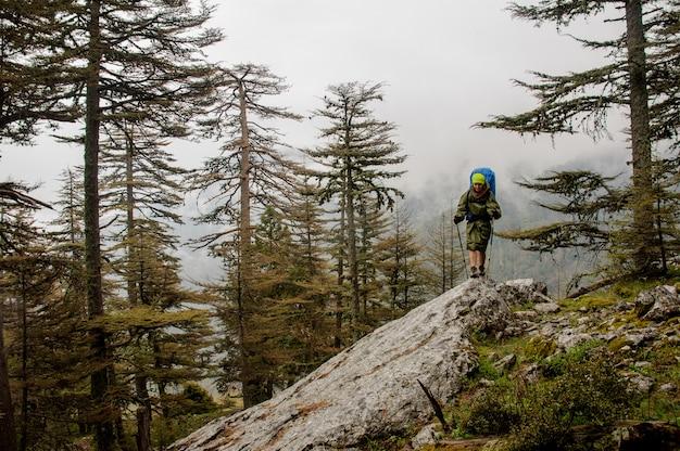 Viandante femminile cammina fino alla cima della montagna