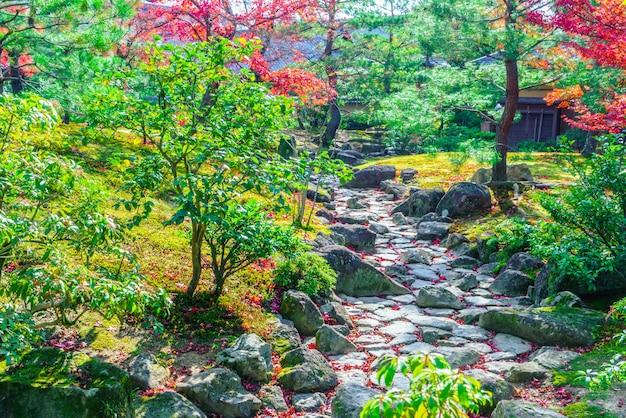 Vibrante paesaggio forestale caduta bellezza