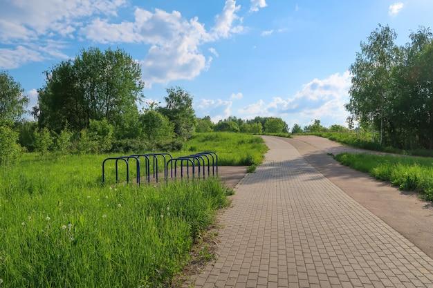 Vicolo del parco di estate ed erba della pista corrente, vista pittoresca degli alberi delle nuvole