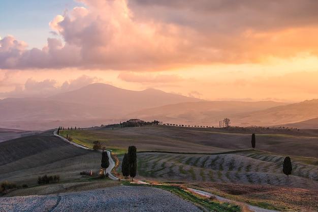 Vicolo di cipressi e campi agricoli all'alba. campagna italiana. val d'orcia toscana. italia. europa