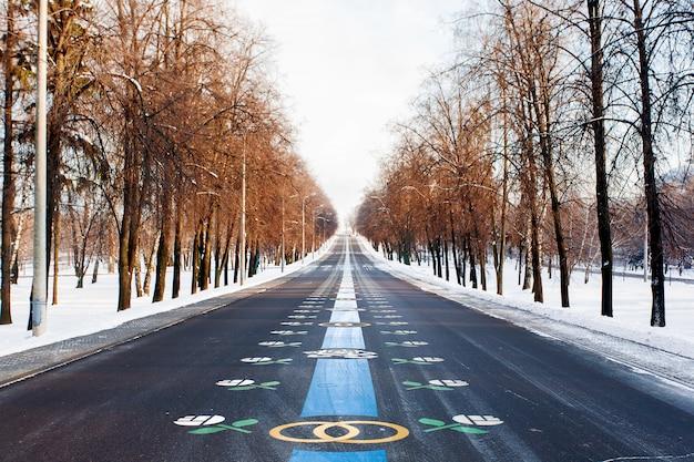 Vicolo di sposi. avenue nel parco della vittoria. giornata di sole invernale. mosca, russia.