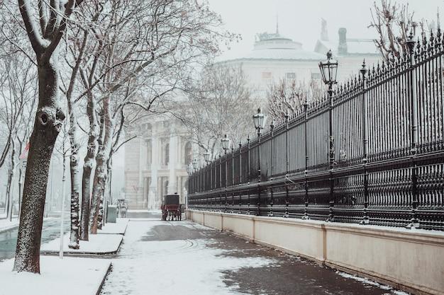 Vienna in inverno