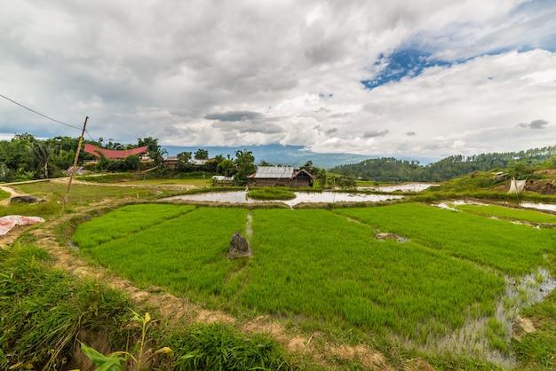 Villaggio tradizionale in sulawesi indonesia