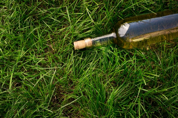 Vino bianco con rami di uva bianca. su un tavolo di legno.