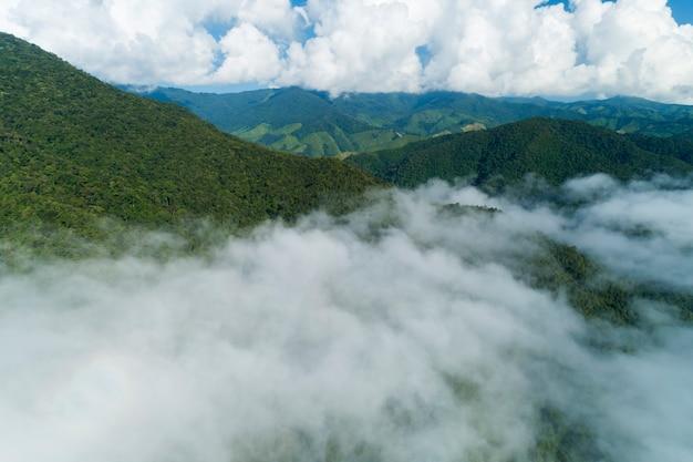 Vista aerea colpo di drone di fluenti onde di nebbia sulla foresta pluviale tropicale di montagna, vista a volo d'uccello immagine sopra le nuvole incredibile paesaggio naturale con nuvole e picchi di montagna