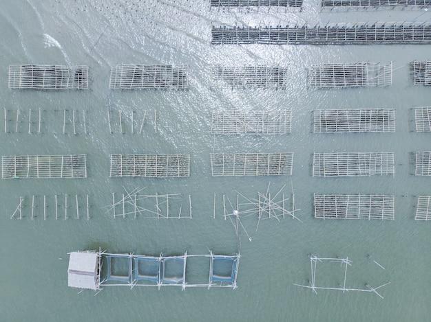 Vista aerea dell'azienda agricola della gabbia e dell'ostrica di pesce in tailandia