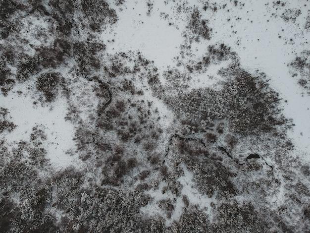 Vista aerea della foresta in inverno