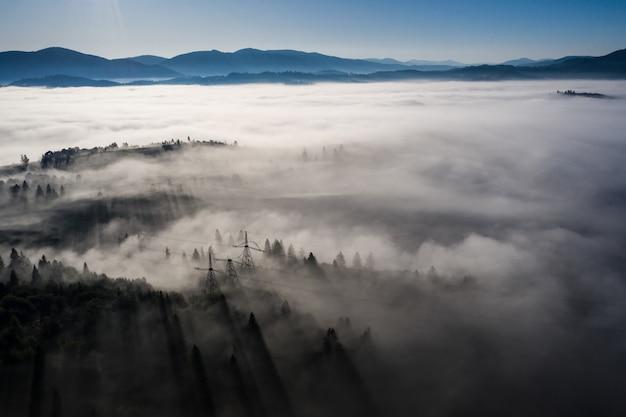Vista aerea della foresta mista variopinta avvolta nella nebbia di mattina un bello giorno di autunno