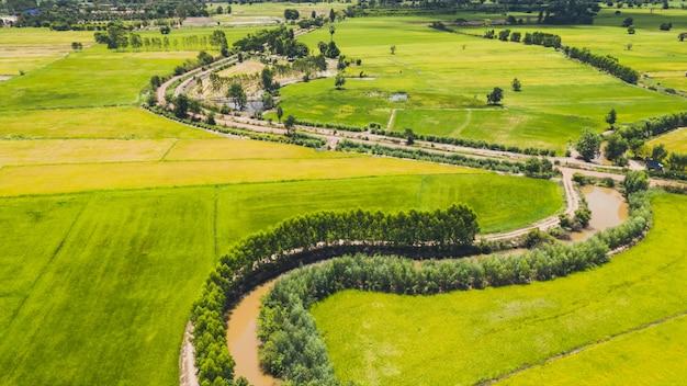 Vista aerea della strada e fiume subdolo in un campo
