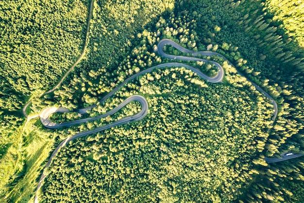 Vista aerea della strada tortuosa nel passo di alta montagna attraverso una fitta pineta verde.