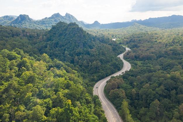 Vista aerea della strada via nella foresta, vista dal fuco