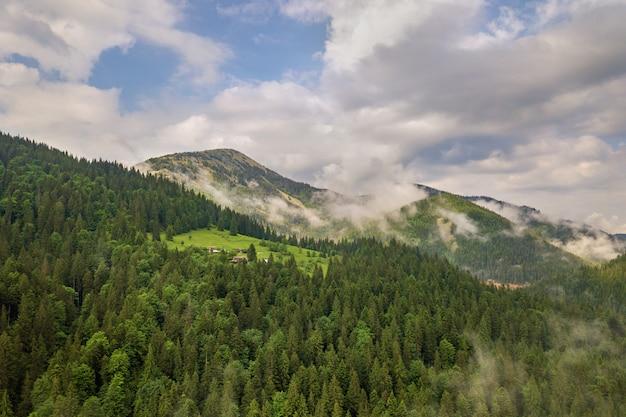 Vista aerea delle montagne verdi coperte di abetaia.