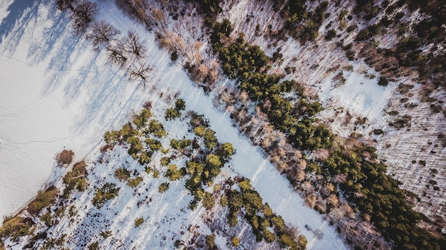 Vista aerea di alberi coperti di neve nella foresta a monaco di baviera