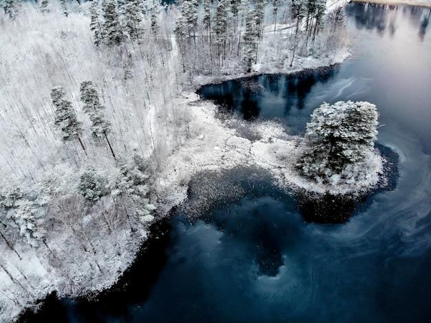 Vista aerea di terra e di alberi innevati accanto al blu di acqua